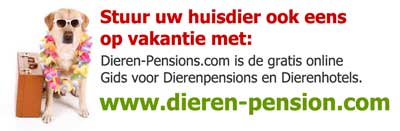 Dierenpension Belgie